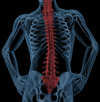 Four Ways to Keep Your Spine Healthy